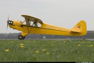 1514316 Piper Cub